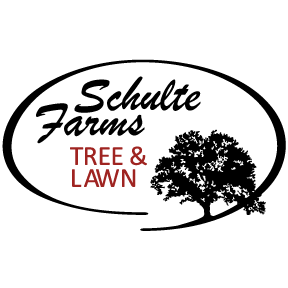 Schulte Farms Tree Lawn